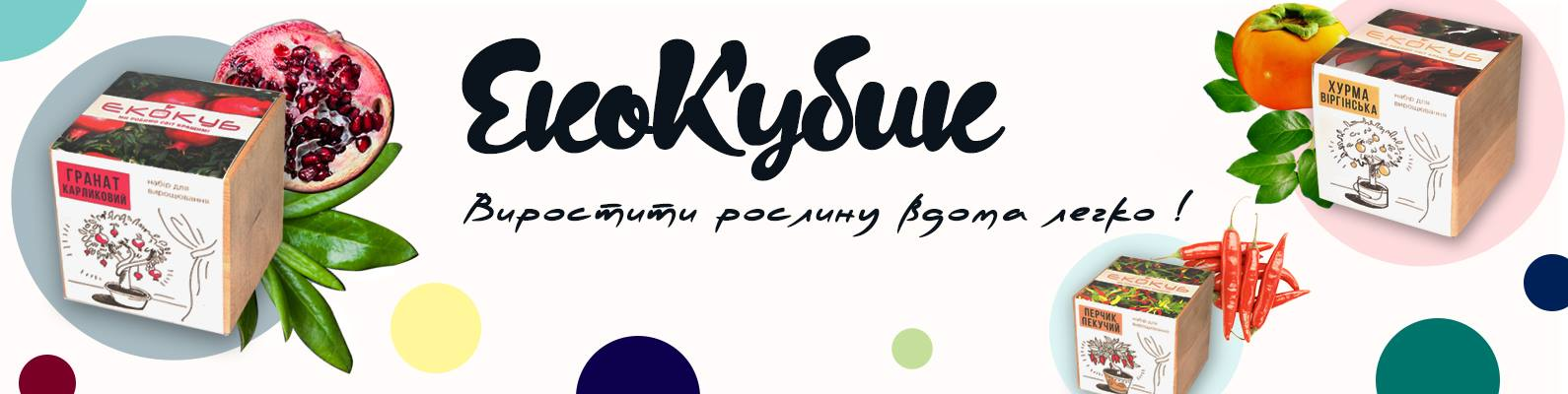 ekokubik